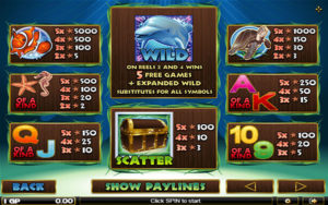Dolphin Reef Joker123